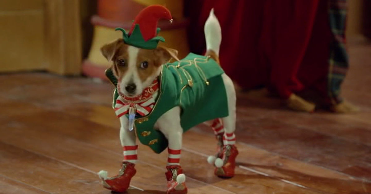 25 Days of Christmas - 11 Things Your Pets Are Probably Thinking At Christmas - 1003