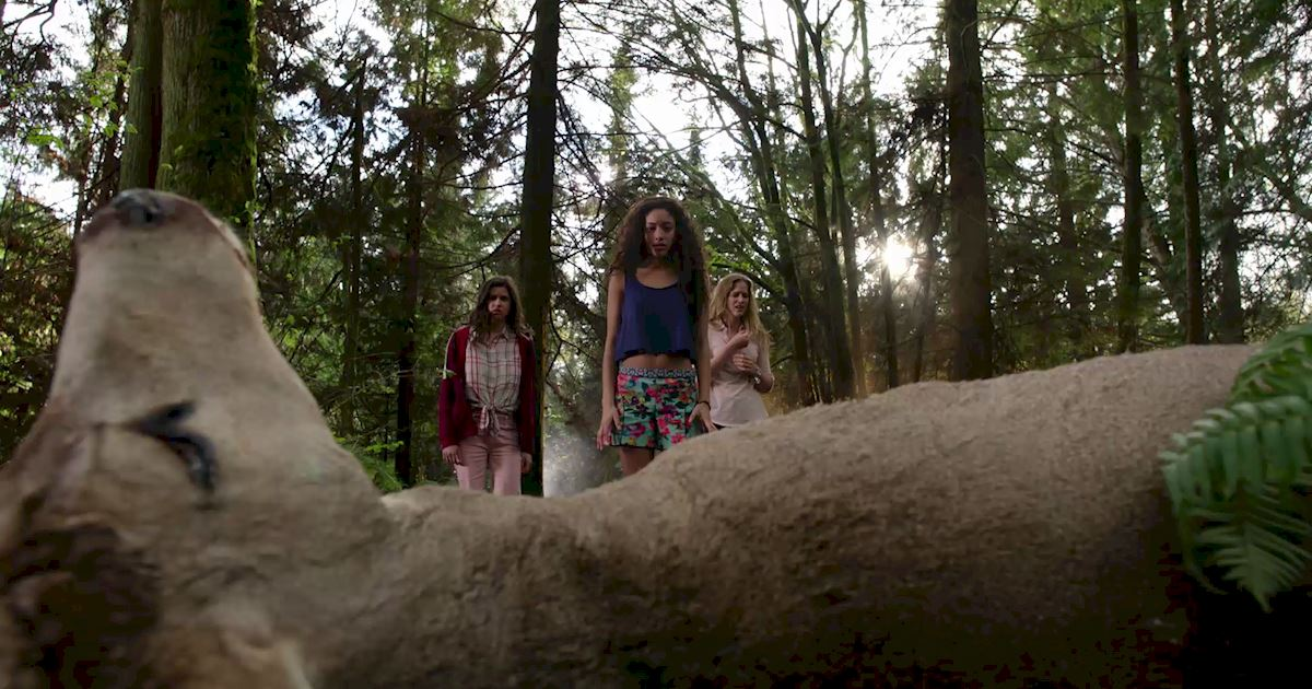 Dead of Summer - 31 Fears We Blame Entirely Upon Our New Horror Obsession - 1008