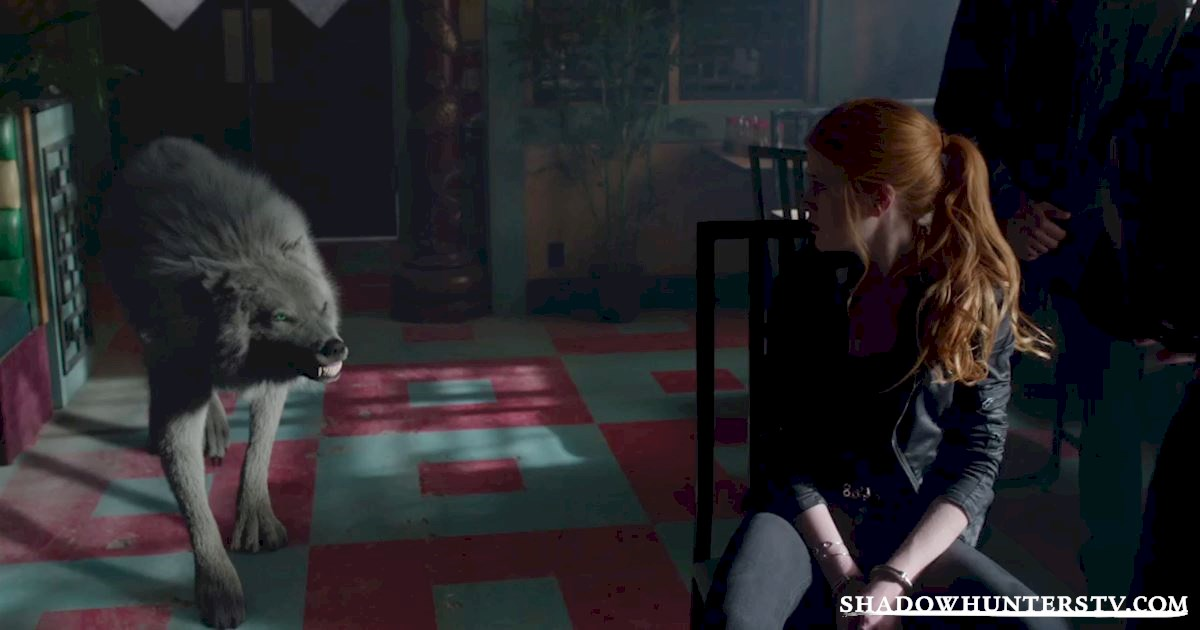 Shadowhunters - 11 Feelings We're All Having Halfway Through The Season! - 1010